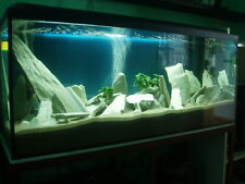 25 KG NATURAL WHITE SLATE STONE FOR AN AQUARIUM VIVARIUM ROCK