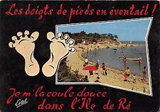 BR30989 Ile de Re la plage et les bois de trousse cheise France