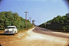 sl95  Slide 1950'S RED KODACHROME FORD CAR SIDE OF ROAD ORANGE ORCHARD 524A