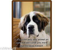 Saint Bernard Dog Refrigerator / Tool Box Magnet Gift Card Insert #2