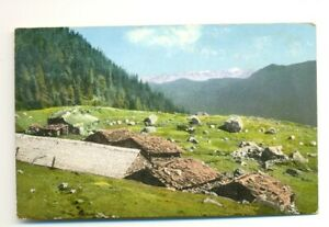 Austria Hungary Feldpostamt 602 postal card 1916 censored