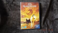 YOUNG BLACK STALLION  DVD