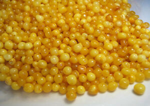 NATURAL BAROQUE POLISHED BALTIC HOLED AMBER LOOSE 50 BEADS EGG YOLK BUTTERSCOTCH