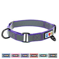 Adjustable Pet Soft Training Martingale Reflective Dog Collar by Pawtitas