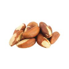 Fresh Brazil Nut 0.5-25 LB Free Shipping