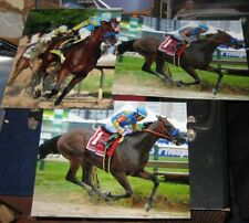 3 AMERICAN PHAROAH Preakness Stakes Kentucky Derby Horse Racing 8x10 Photos