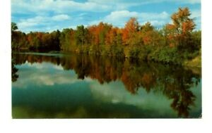 Northern Autumn Lake Mills Postmark Wisconsin Postcard c.1958 B6