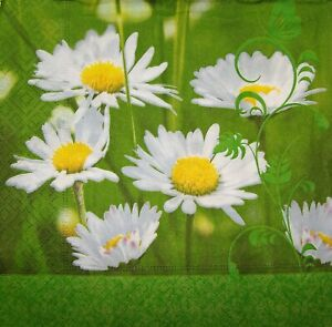 4 x Single Paper Napkins for Decoupage Craft Table Daisies 178