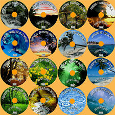 SOUNDS OF NATURE 16 RELAXING AUDIO CD'S BIRDSONG FOREST JUNGLE WAVES THUNDER ETC