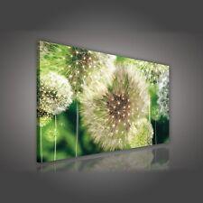 Deko-Bilder & -Drucke mit Pusteblume fürs Badezimmer | eBay