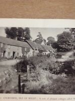 Ephemera 1949 Picture Calborne Isle Of Wight f1k