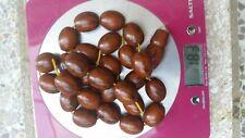 Amber Prayer Beads  Bakelite Faturan Rosary 183 grams.
