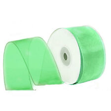 "1/4"" Plain Sheer Organza Nylon Ribbon 25 Yards - Mint Green"