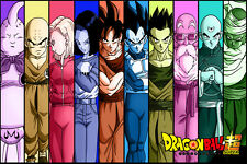 Dragon Ball Super Tournament of Power Intro Poster 12in x 18in Free Shipping