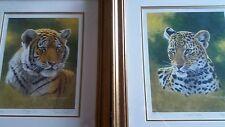 Stephen Gayford Tiger Cub & Leopard Cub Pair Limited Edition Prints