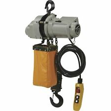 Strongway Round Chain Electric Hoist- 1-Ton Load Capacity 9.8ft. Lift