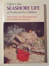 SEASHORE LIFE OF FLORIDA AND CARIBBEAN Gilbert Voss marine biology snorkeling