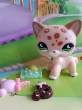 Pet shop Chat Chaton Europeen * Petshop Kitty Cat # 852 NEUF + Accessoires