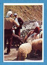 ITALIA PATRIA NOSTRA - Panini 1969 -Figurina/Sticker n. 286 - DIAMANTE -rec
