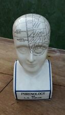 "Extra Large Phrenology Head - 12"" Ceramic - Brand New"