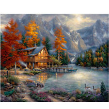 """Mountain Paint by Number Kit Forest House Home DIY Oil Painting Dimensions 20"""""""