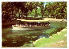 Florida's Silver Springs Jungle Cruise Vintage Postcard Fort King Waterway Boat