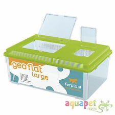 Ferplast Geo Plastic Tank Flat Large Mixed Colours 46.7x30.5x17.5cm