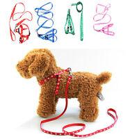 Pet Small Dog Puppy Cat ten Rabbit Harness Collar Leash Lead Adjustabl