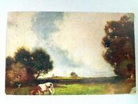 Vintage Postcard Farmstead Scene Cow in Pasture 1907