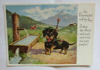 """""""Dackel, Hund, Berge, Wandern, Tränke"""" 1950  ♥ (31240)"""