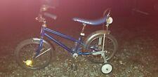 Schwinn PIXIE Sting-Ray Bike, BLUE!!🍬