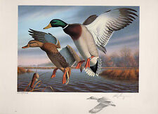 VIRGINIA #1 1988 STATE DUCK STAMP PRINT MALLARDS EXEC ED by Ronald Louque