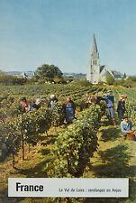 Affiche originale années 50 - Entoilée - Le val de Loire - Vendanges -ANJOU