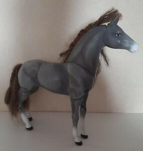 2005 Cali Girl Pferd Topanga California Girls