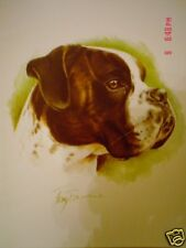 Lovely Boxer Blank Greeting Card