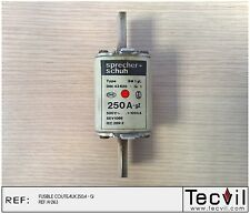 Fusible couteaux 250 A - gI Type SM 1 gL Sprecher Schuh DIN 43620   fuse