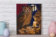 Craft Buddy DIY Crystal Art ASTROLOGER OWL picture Kit by Lisa Parker 40 x 50 cm