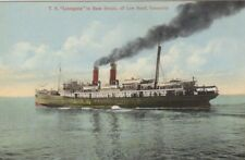 Union Line Ts Loongana Colored Postcard Tasmania