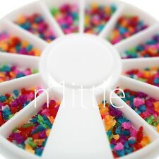12 Mixed Colors Crushed Shell Powder Acrylic Nail Art Decoration+ Wheel #N508Z