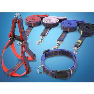 Personalized Dog Collar Leash Chest Band Nylon Adjustable S M L XL Labrador