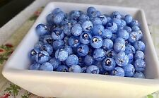Blueberry Beads,Vintage Beads,blueberries Beads,Blue Beads,7mm glass Beads #1679