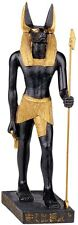 Egyptian Anubis Jackal God of the Underworld Statue