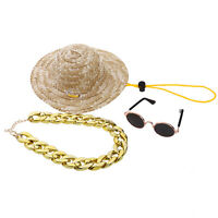 Cool Cat Dog Sunglasses Costume Hat Gold Chain Classic Retro Funny Party Dress