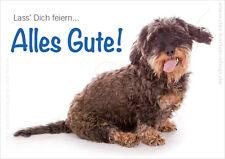 Doppelkarte + Kuvert Glückwunschkarte Geburtstagskarte Hund Dackel Alles Gute!