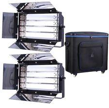 LB42D 2 X 4 bancos + Estuche De Mosca 1100W 455 Luz Fluorescente Banco video lighting luz del día
