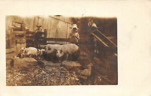 G68/ Occupational RPPC Postcard c1910 Farmer Pigs Hogs Barn 10
