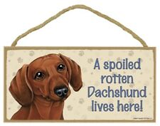 "A Spoiled Rotten Dachshund lives here! (Brown) Dog Sign 5""x10"" Wood Plaque 154"