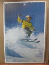 Vintage 1975 Powder Blast skiing Ski Inv#G461