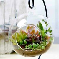 Hanging Glass Flowers Plant Vase Stand Holder Terrarium Container-Wedding-D E2Q4