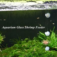 Glass Aquarium Feeding Fish Cylindrical Tube Mini Feeder Dish Bit Diet  UK! D1